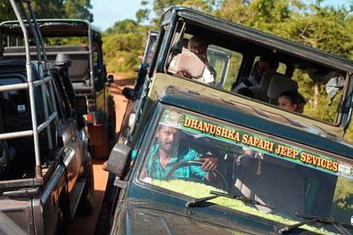 Yala Nationalpark Safari Jeep