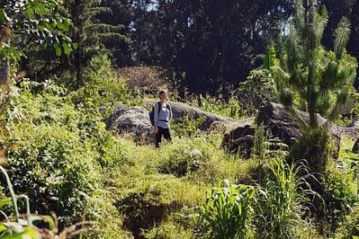 Usambara Mountains Shortcut Franzi