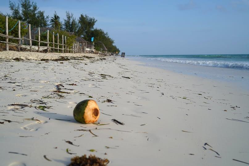 Paje Beach Kokosnuss