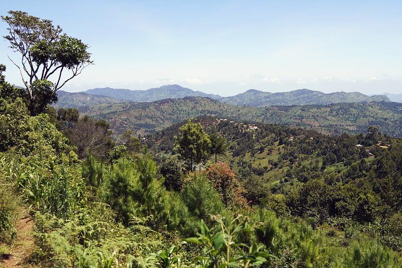 Usambara Mountains Ausblick vom Regenwald