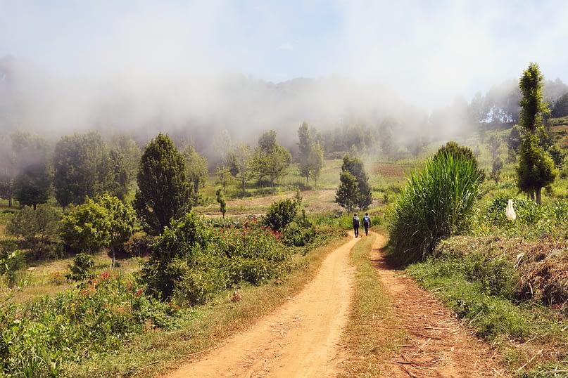 Usambara Mountains Wanderung