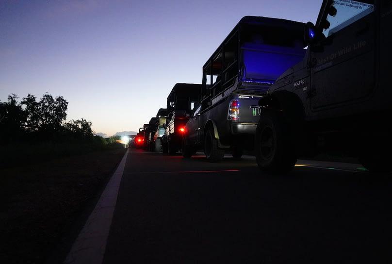 Yala Nationalpark Jeep Schlange