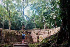 Palenque Dschungel Franzi