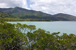 Daintree Forest Meer und Dschungel