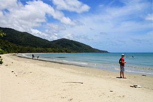 Daintree Forest Strand