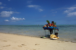 Mauritius Obststand Strand