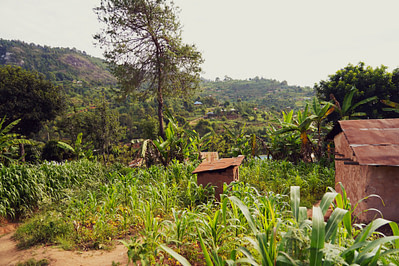 Usambara Mountains Hütten