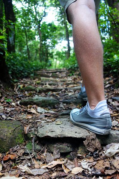 Selva Negra Wandern Bein