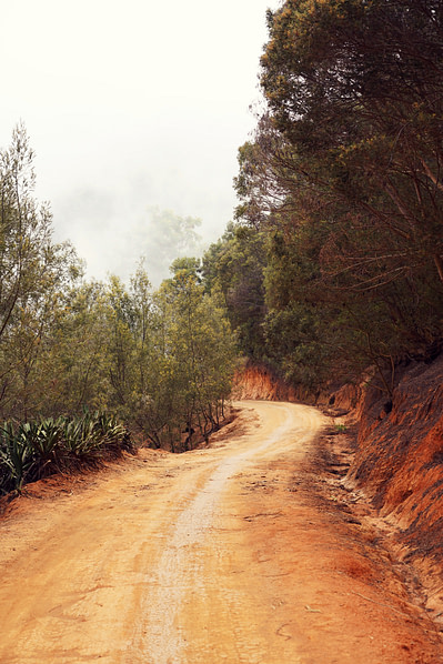 Usambara Wanderung Straße und Nebel