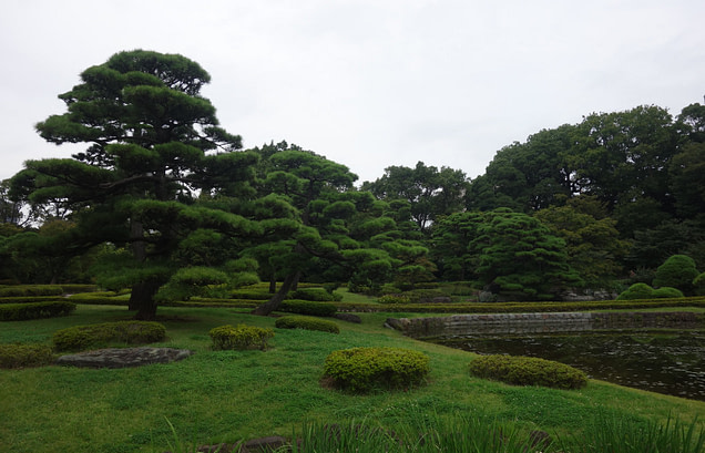 Tokio Imperial Palace East Garden
