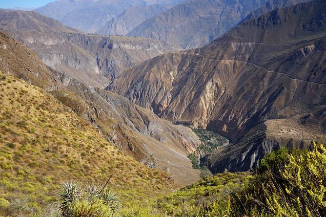Colca Canyon Blick in die Schlucht