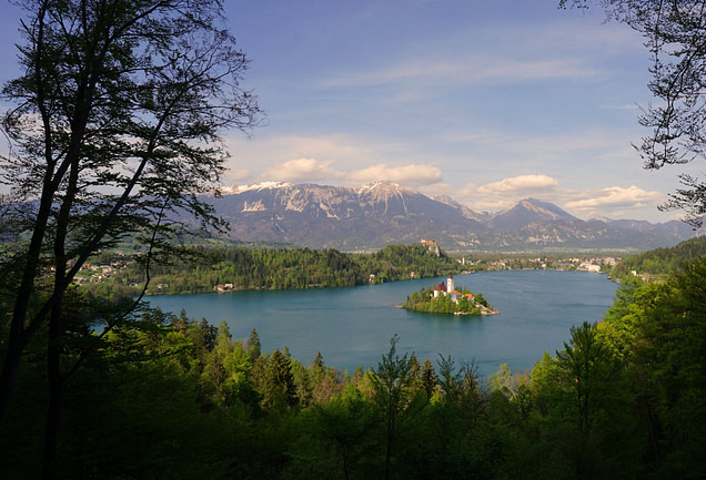 Bled See mit Insel aus Wald