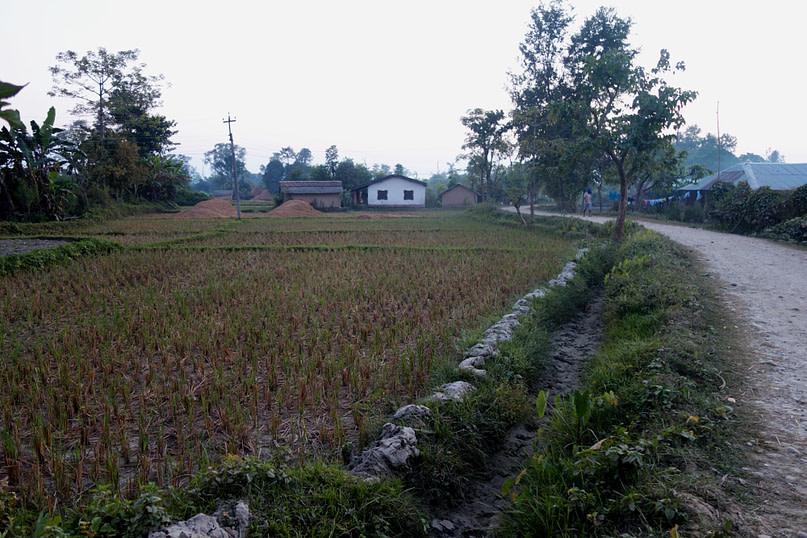 Bardia NP Tharu Dorf Straße