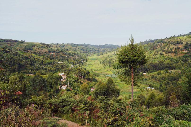 Usambara Mountains Tal