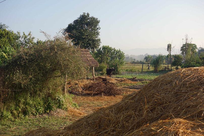 Bardia Nationalpark Tharu Dorf