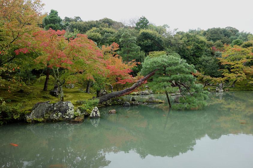 Japan Reisetipps Herbst